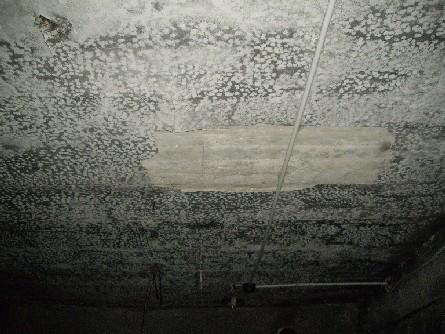 Сдаётся в субаренду подвал (неотделанный) в жилом доме