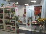Продаю цветочный салон м. Динамо