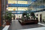 Сдаём торгово-офисные площади в г. Москва и МО 8-985-987-60-09 Михаил.